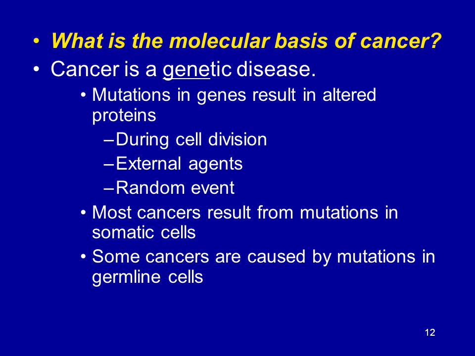 12 What is the molecular basis of cancer? Cancer is a genetic disease. Mutations in genes result in altered proteins –During cell division –External a