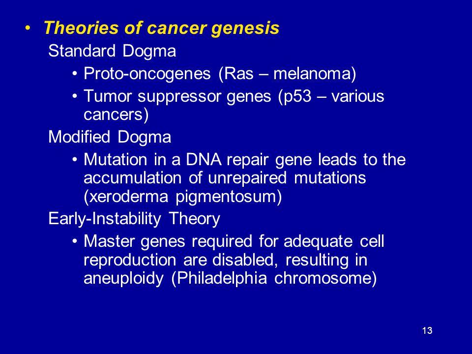 13 Theories of cancer genesis Standard Dogma Proto-oncogenes (Ras – melanoma) Tumor suppressor genes (p53 – various cancers) Modified Dogma Mutation i