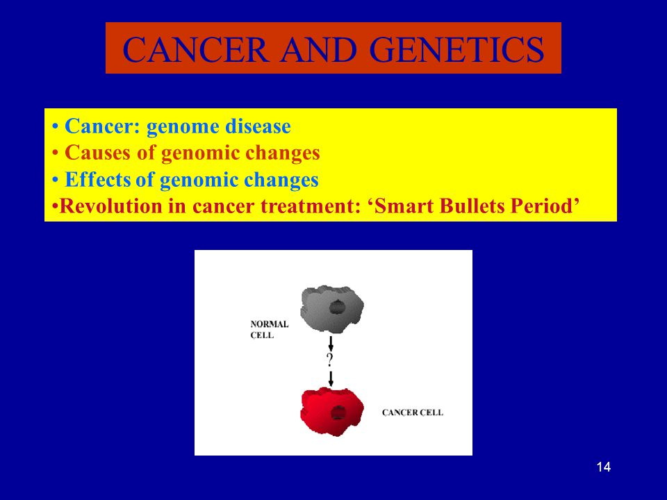 14 CANCER AND GENETICS Cancer: genome disease Causes of genomic changes Effects of genomic changes Revolution in cancer treatment: 'Smart Bullets Peri