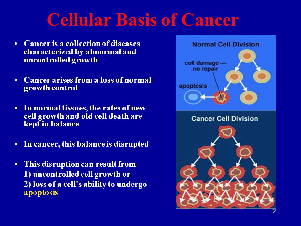 2 Cellular Basis of Cancer Cancer is a collection of diseases characterized by abnormal and uncontrolled growth Cancer arises from a loss of normal gr