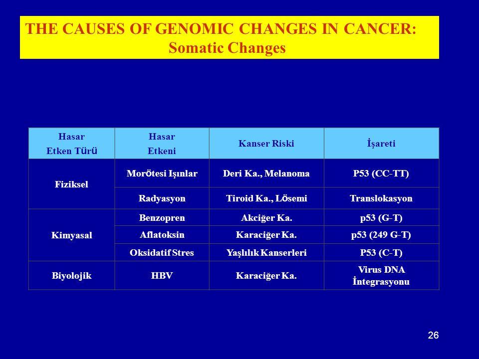 26 Hasar Etken T ü r ü Hasar Etkeni Kanser Riskiİşareti Fiziksel Mor ö tesi Işınlar Deri Ka., MelanomaP53 (CC-TT) Radyasyon Tiroid Ka., L ö semi Trans