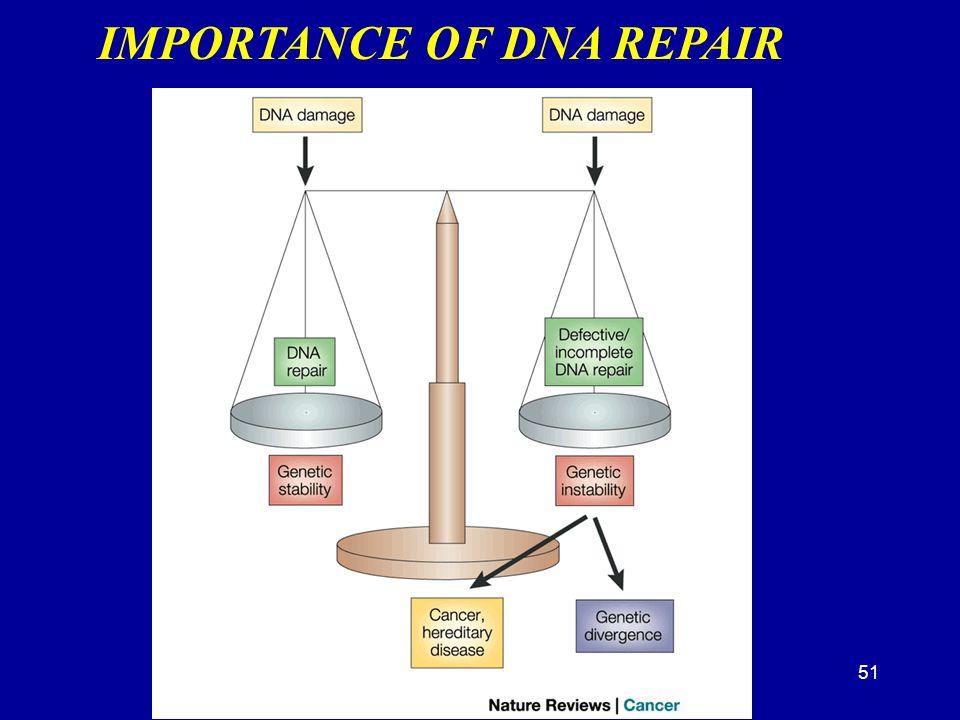 51 IMPORTANCE OF DNA REPAIR