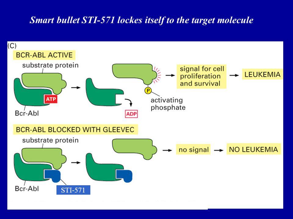 58 Smart bullet STI-571 lockes itself to the target molecule STI-571