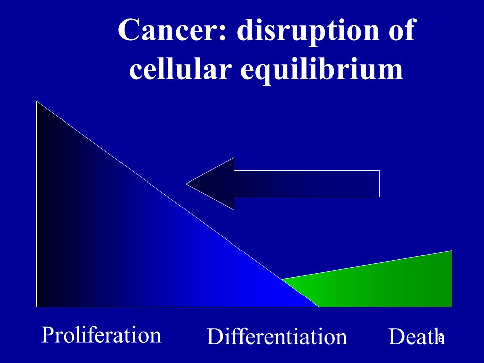 7 Post mitotic Stem cell Differentiated Normal senescent differentiated cell Benign tumor Grade 2 malignancy Grade 3 or 4 malignancy Stem cells as the target of carcinogens