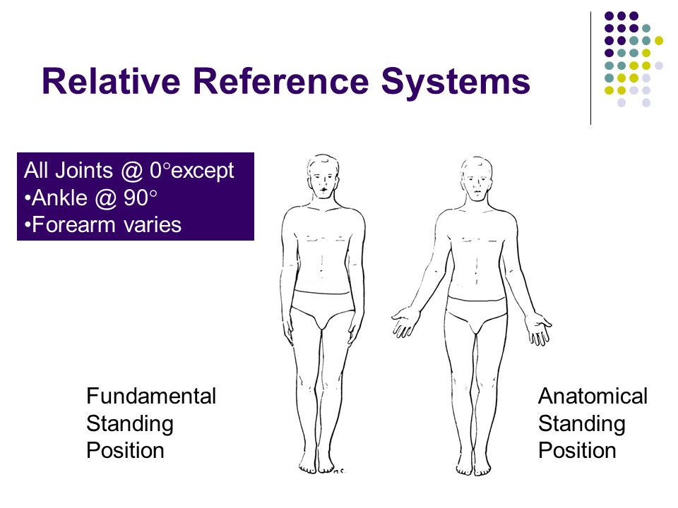 Relative Reference Systems Fundamental Standing Position Anatomical Standing Position All 0  except 90  Forearm varies