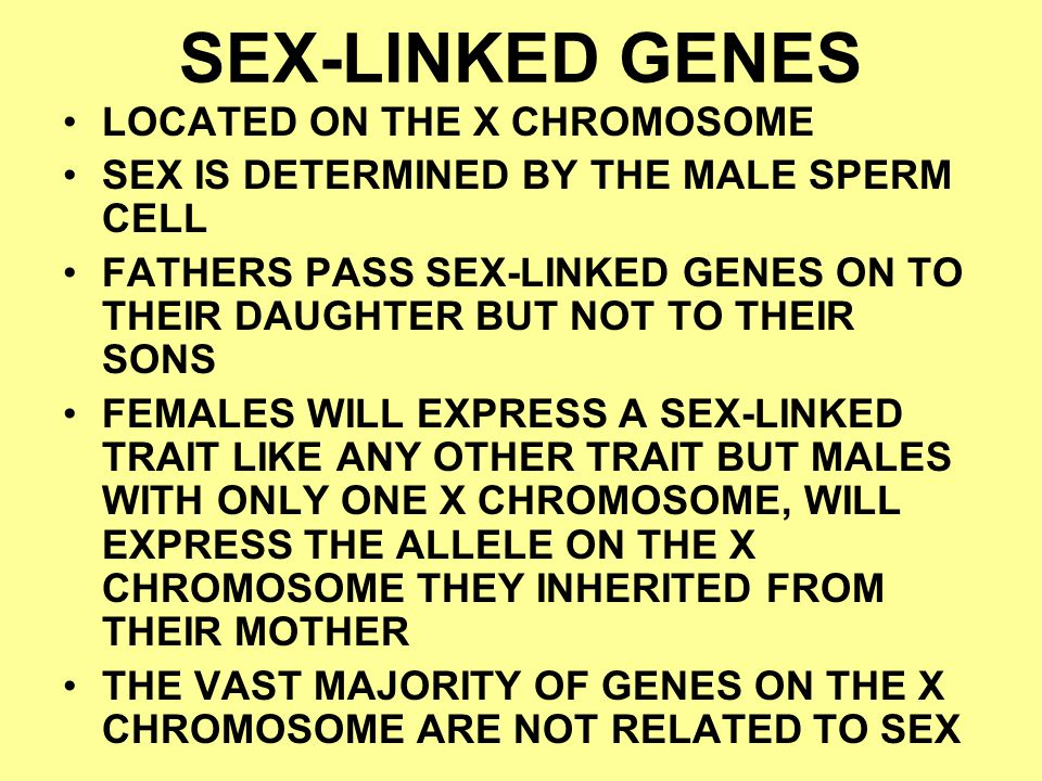 SEX-LINKED GENES LOCATED ON THE X CHROMOSOME SEX IS DETERMINED BY THE MALE SPERM CELL FATHERS PASS SEX-LINKED GENES ON TO THEIR DAUGHTER BUT NOT TO TH