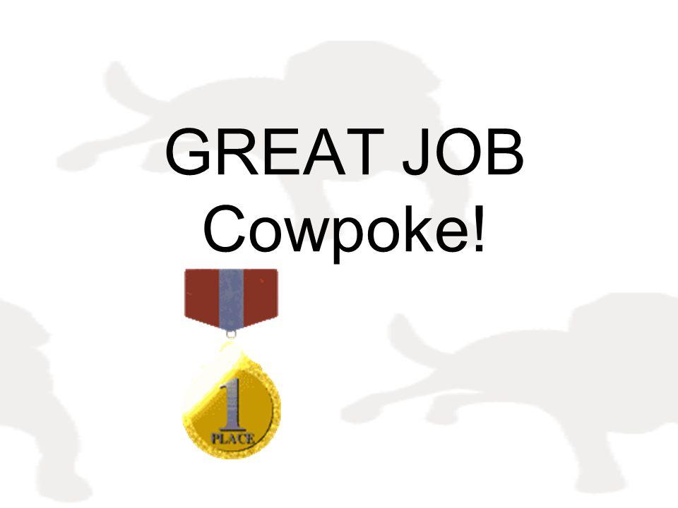 GREAT JOB Cowpoke!
