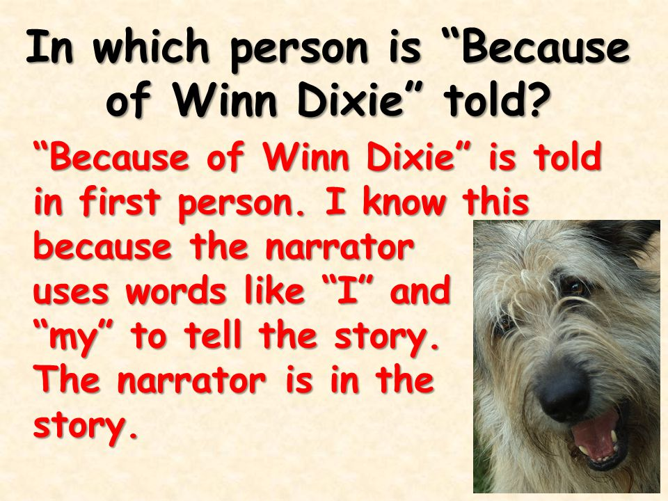 """In which person is """"Because of Winn Dixie"""" told? """"Because of Winn Dixie"""" is told in first person. I know this because the narrator uses words like """"I"""""""