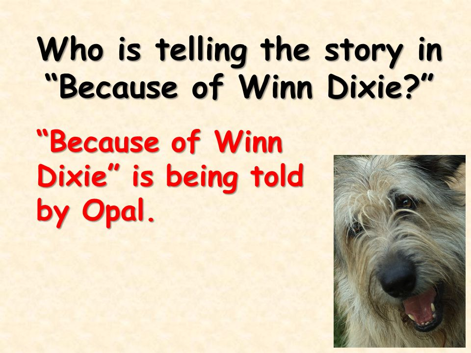 """Who is telling the story in """"Because of Winn Dixie?"""" """"Because of Winn Dixie"""" is being told by Opal."""