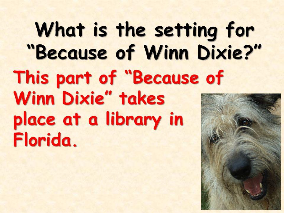 Why does Miss Franny think Winn Dixie is a bear.