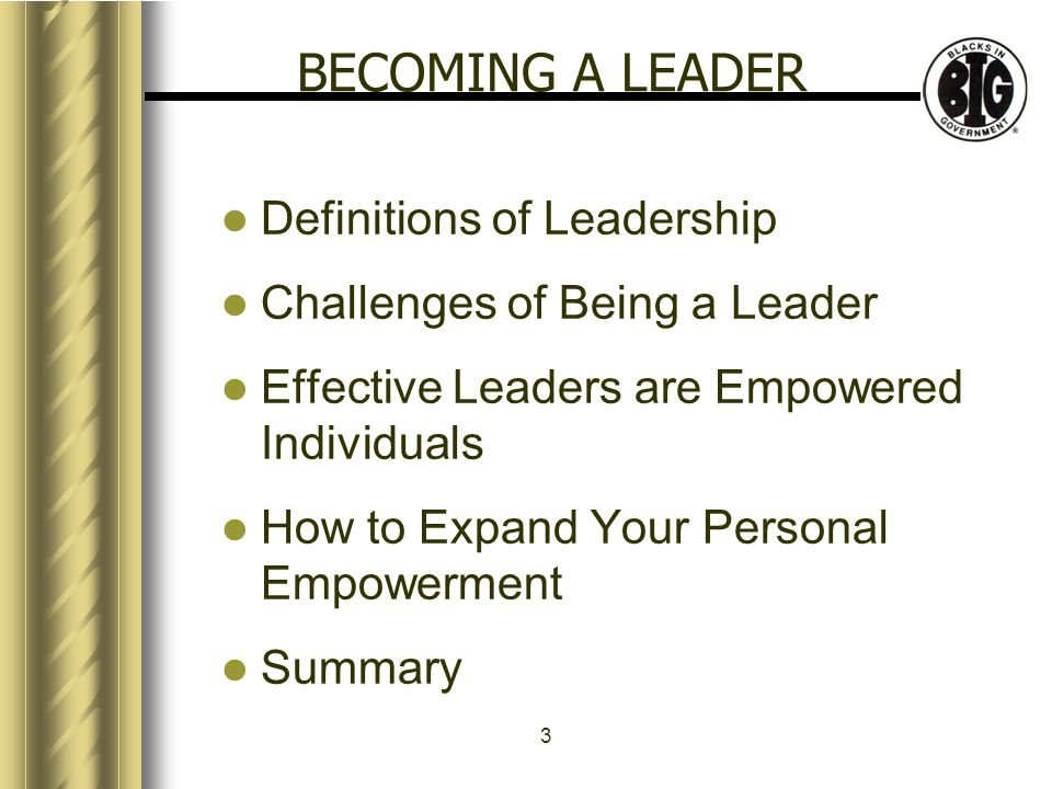 3 BECOMING A LEADER Definitions of Leadership Challenges of Being a Leader Effective Leaders are Empowered Individuals How to Expand Your Personal Empowerment Summary