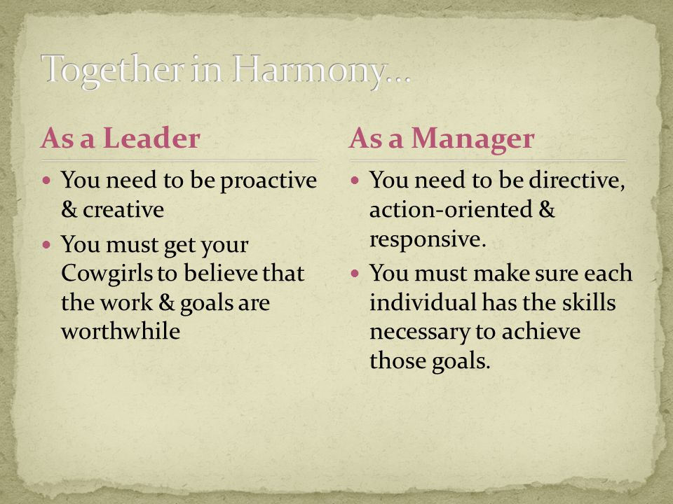 As a Leader You need to be proactive & creative You must get your Cowgirls to believe that the work & goals are worthwhile You need to be directive, action-oriented & responsive.