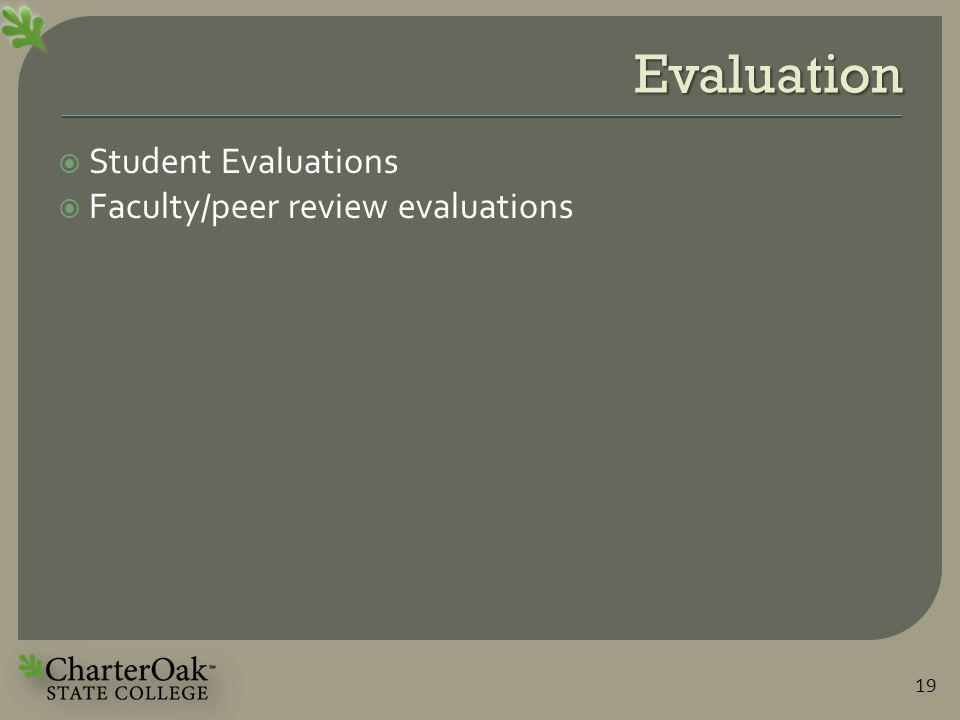 Evaluation  Student Evaluations  Faculty/peer review evaluations 19