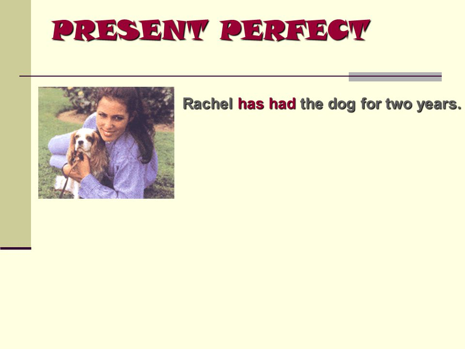 Rachel has had had the dog for two years.