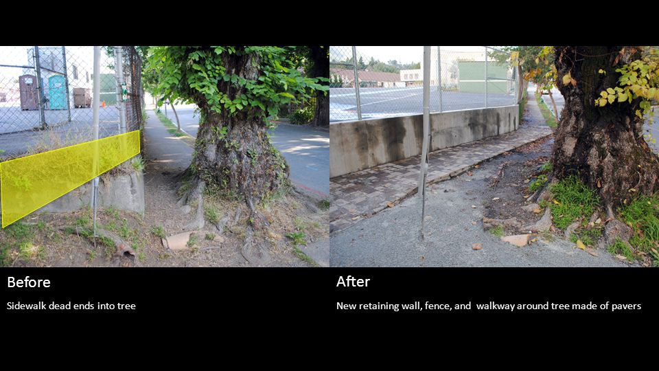 New retaining wall, fence, and walkway around tree made of pavers Before After Sidewalk dead ends into tree