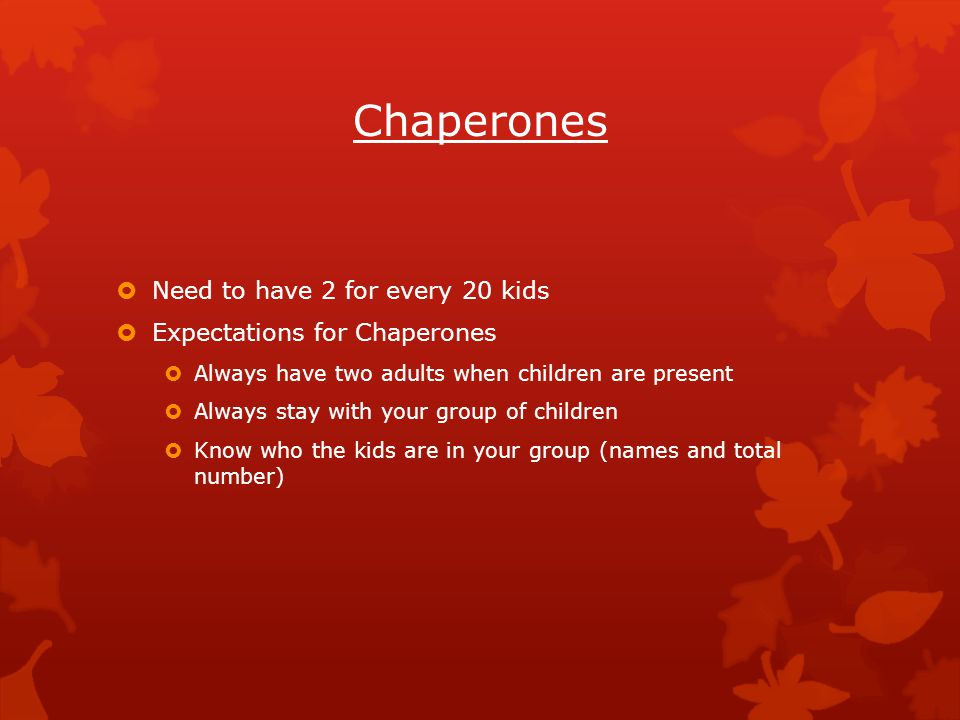 Chaperones  Need to have 2 for every 20 kids  Expectations for Chaperones  Always have two adults when children are present  Always stay with your group of children  Know who the kids are in your group (names and total number)
