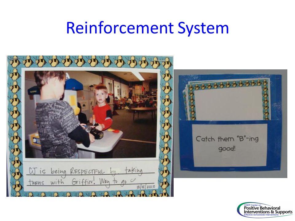 Reinforcement System