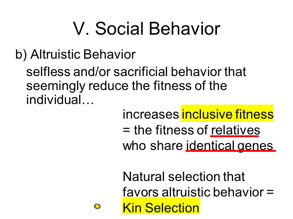 b) Altruistic Behavior selfless and/or sacrificial behavior that seemingly reduce the fitness of the individual… V.