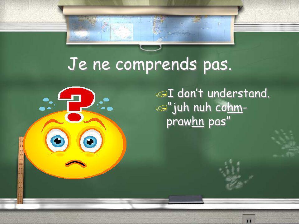 "Je ne comprends pas. / I don't understand. / ""juh nuh cohm- prawhn pas"""