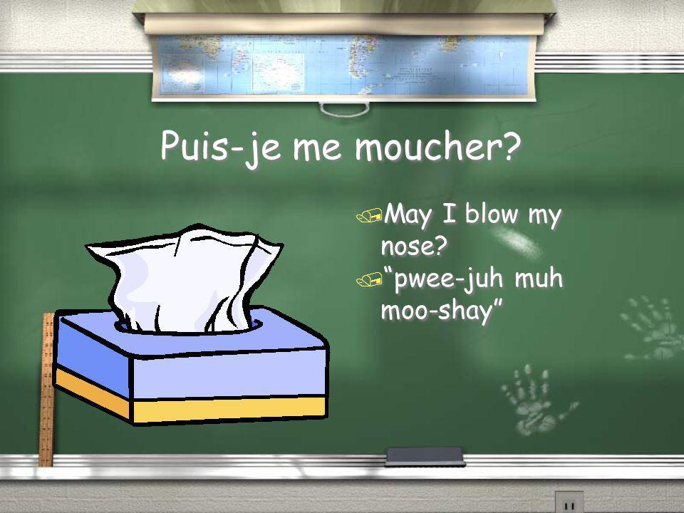 """Puis-je me moucher? / May I blow my nose? / """"pwee-juh muh moo-shay"""""""