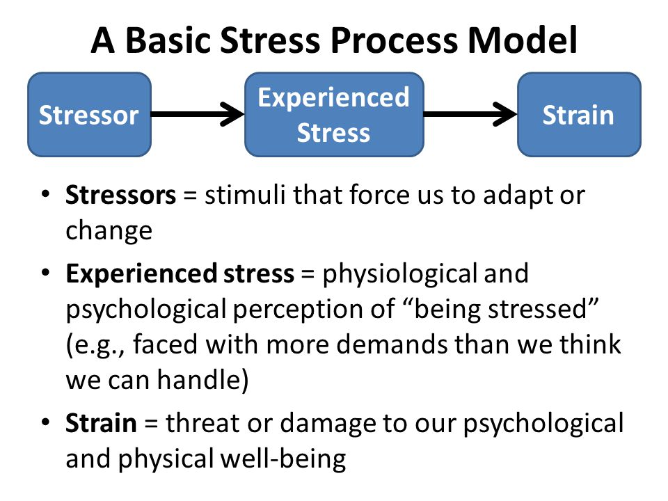 A Basic Stress Process Model Stressors = stimuli that force us to adapt or change Experienced stress = physiological and psychological perception of being stressed (e.g., faced with more demands than we think we can handle) Strain = threat or damage to our psychological and physical well-being Stressor Experienced Stress Strain