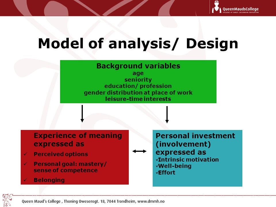 Model of analysis/ Design Background variables age seniority education/ profession gender distribution at place of work leisure-time interests Experience of meaning expressed as Perceived options Personal goal: mastery/ sense of competence Belonging Personal investment (involvement) expressed as Intrinsic motivation Well-being Effort