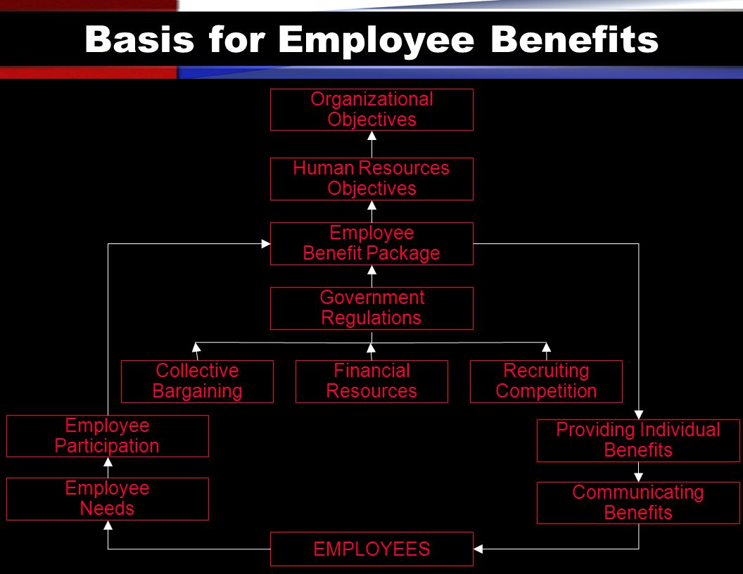 Basis for Employee Benefits Organizational Objectives Human Resources Objectives Employee Benefit Package Government Regulations Financial Resources Collective Bargaining Recruiting Competition EMPLOYEES Employee Participation Employee Needs Providing Individual Benefits Communicating Benefits