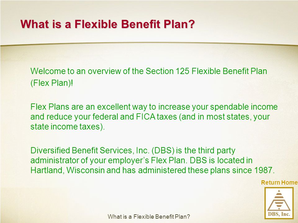 Return Home Welcome to an overview of the Section 125 Flexible Benefit Plan (Flex Plan)! Flex Plans are an excellent way to increase your spendable in