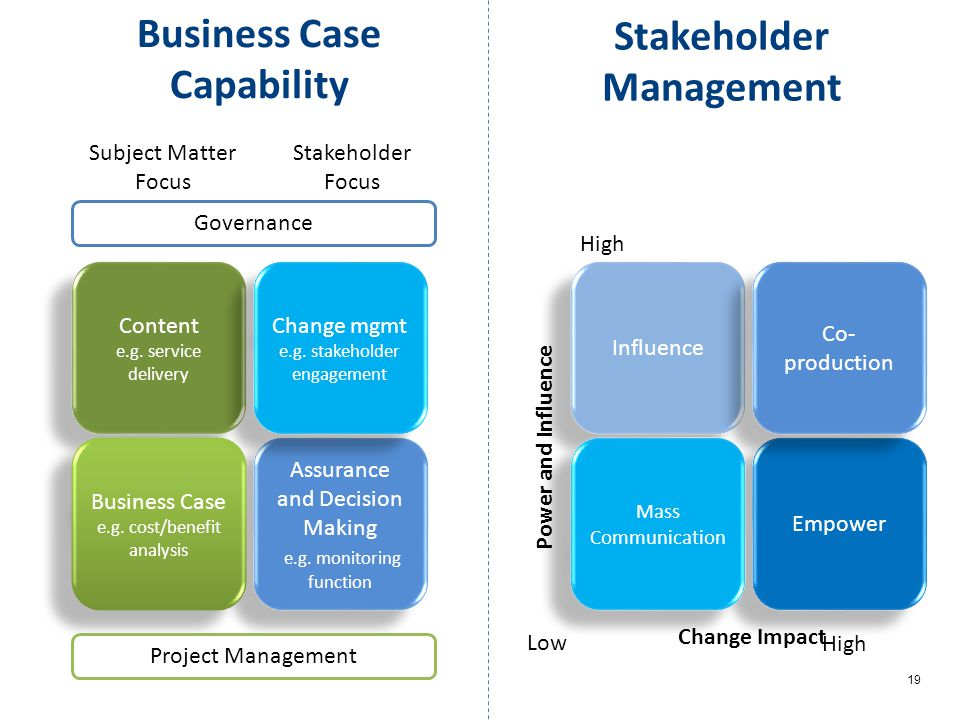 19 Business Case Capability Content e.g. service delivery Content e.g. service delivery Assurance and Decision Making e.g. monitoring function Assuran