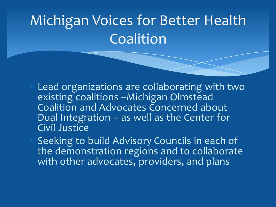  Lead organizations are collaborating with two existing coalitions --Michigan Olmstead Coalition and Advocates Concerned about Dual Integration -- as well as the Center for Civil Justice  Seeking to build Advisory Councils in each of the demonstration regions and to collaborate with other advocates, providers, and plans Michigan Voices for Better Health Coalition