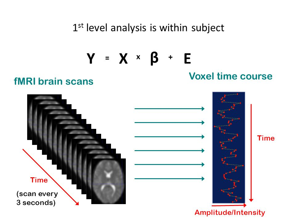 1 st level analysis is within subject Time (scan every 3 seconds) fMRI brain scans Voxel time course Amplitude/Intensity Time Y = X x β + E