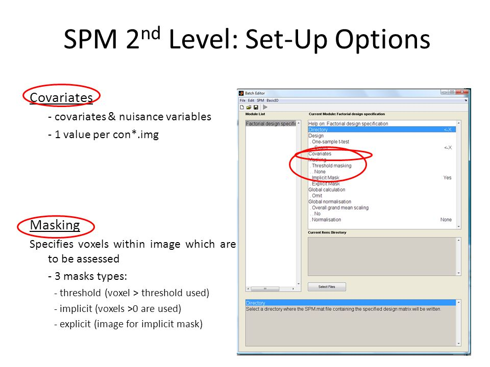 SPM 2 nd Level: Set-Up Options Covariates - covariates & nuisance variables - 1 value per con*.img Masking Specifies voxels within image which are to
