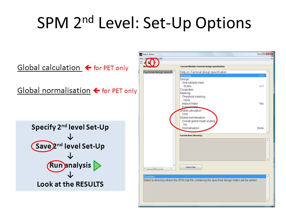 SPM 2 nd Level: Set-Up Options Global calculation  for PET only Global normalisation  for PET only Specify 2 nd level Set-Up ↓ Save 2 nd level Set-U