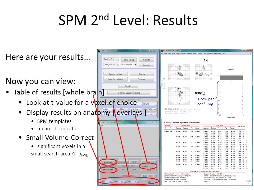 SPM 2 nd Level: Results Here are your results… Now you can view: Table of results [whole brain] Look at t-value for a voxel of choice Display results