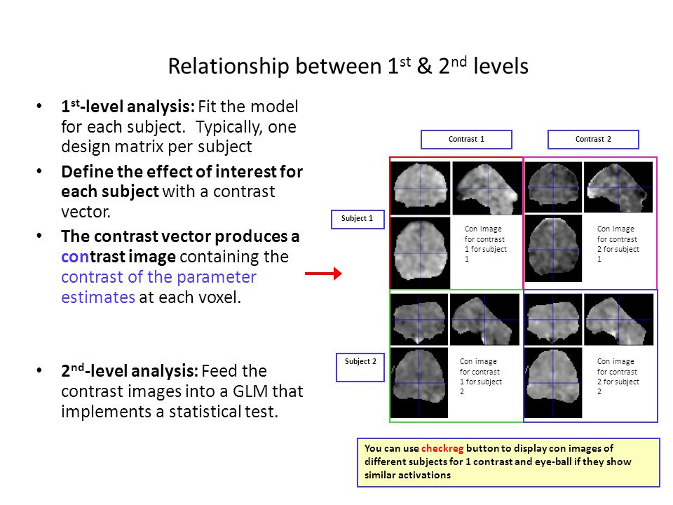 Both use the GLM model/tests and a similar SPM machinery Both produce design matrices.