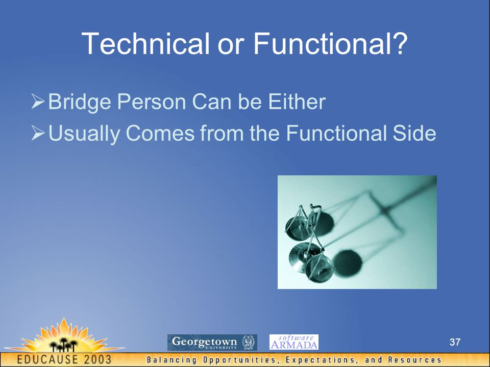 37 Technical or Functional  Bridge Person Can be Either  Usually Comes from the Functional Side