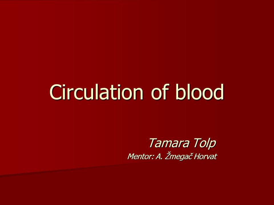 Circulation of blood Tamara Tolp Tamara Tolp Mentor: A. Žmegač Horvat Mentor: A. Žmegač Horvat