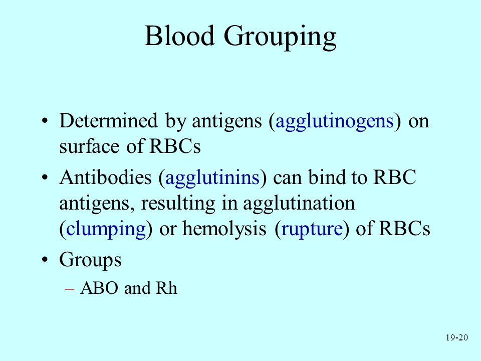 19-20 Blood Grouping Determined by antigens (agglutinogens) on surface of RBCs Antibodies (agglutinins) can bind to RBC antigens, resulting in aggluti