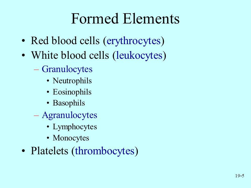19-5 Formed Elements Red blood cells (erythrocytes) White blood cells (leukocytes) –Granulocytes Neutrophils Eosinophils Basophils –Agranulocytes Lymphocytes Monocytes Platelets (thrombocytes)