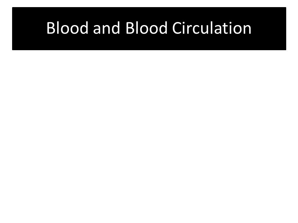 Blood and Blood Circulation