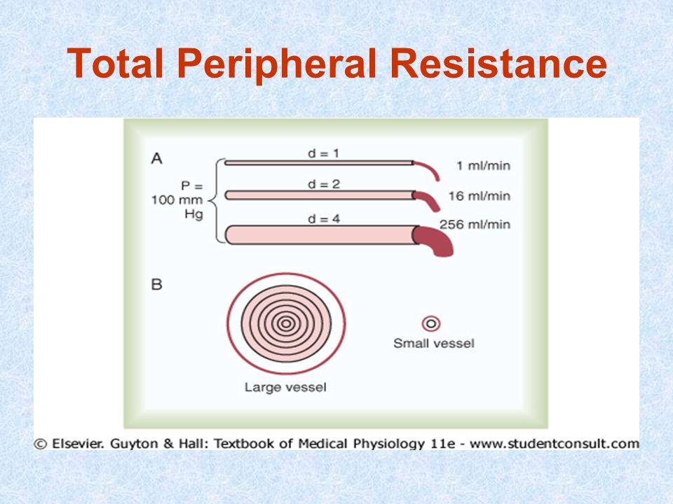 Total Peripheral Resistance
