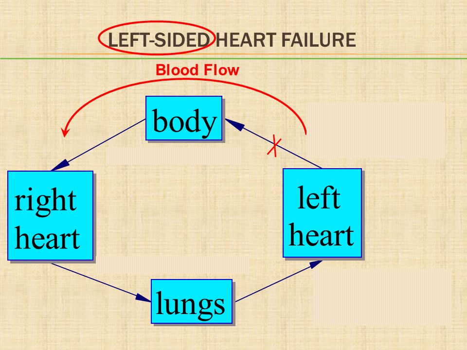 LEFT-SIDED HEART FAILURE Systolic: LV does not pump enough blood to body Diastolic: LV does not accept enough blood from lungs Body lacks blood Lungs