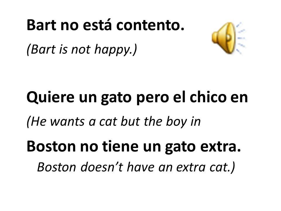 Le habla: (He talks to him:) -¡Hola! Tengo un problema. No tengo un gato. (Hi! I have a problem. I don't have a cat. Quiero un gato. ¿Tienes un gato e