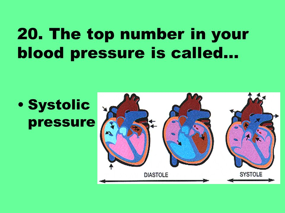20. The top number in your blood pressure is called… Systolic pressure