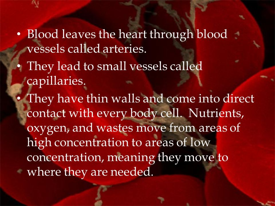 Blood leaves the heart through blood vessels called arteries. They lead to small vessels called capillaries. They have thin walls and come into direct