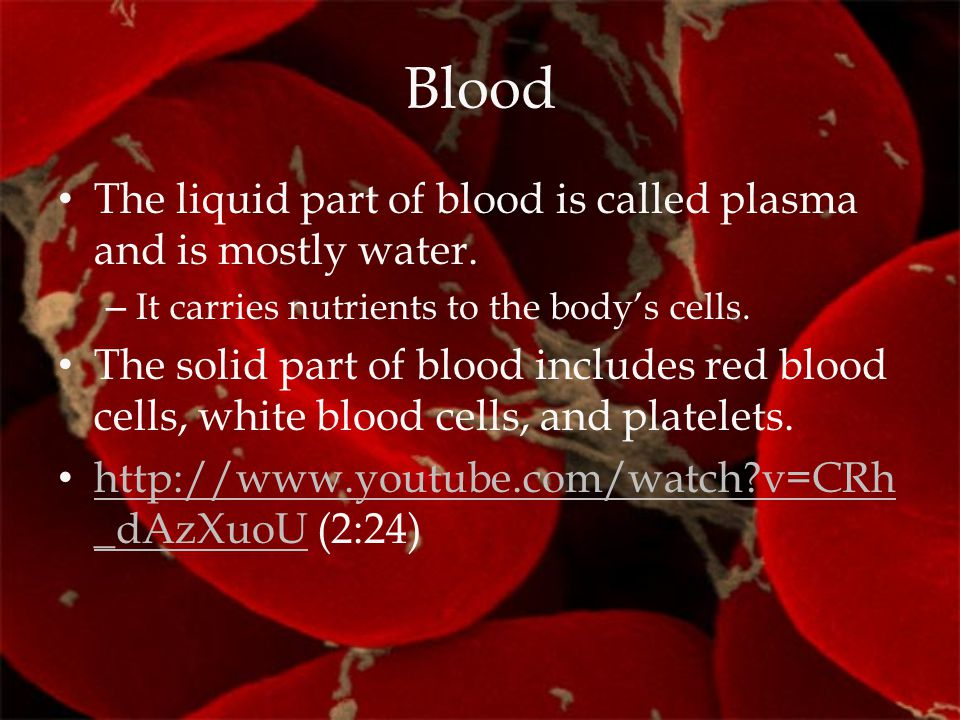 Blood The liquid part of blood is called plasma and is mostly water. – It carries nutrients to the body's cells. The solid part of blood includes red