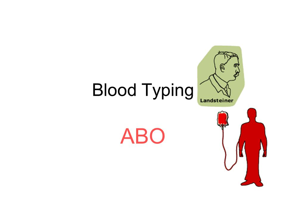 O positive and negative blood