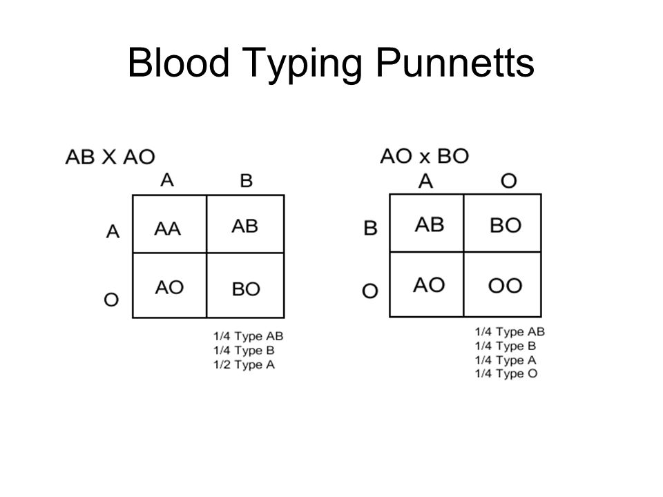 What are the blood types that the father would have of a mother of blood type A for a son to have type B blood? B or O A, B, AB or O AB or B A or B A, B, or AB