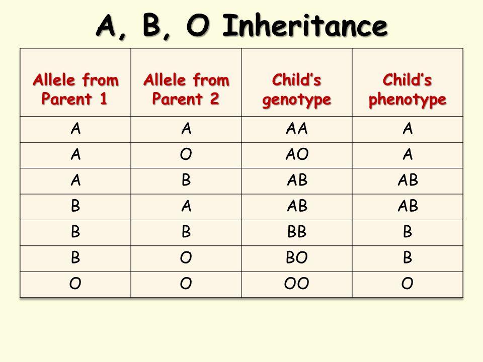 A, B, O Inheritance
