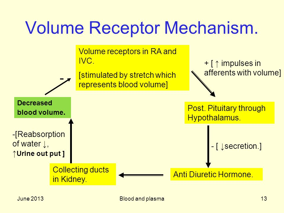 June 2013Blood and plasma13 Volume Receptor Mechanism.